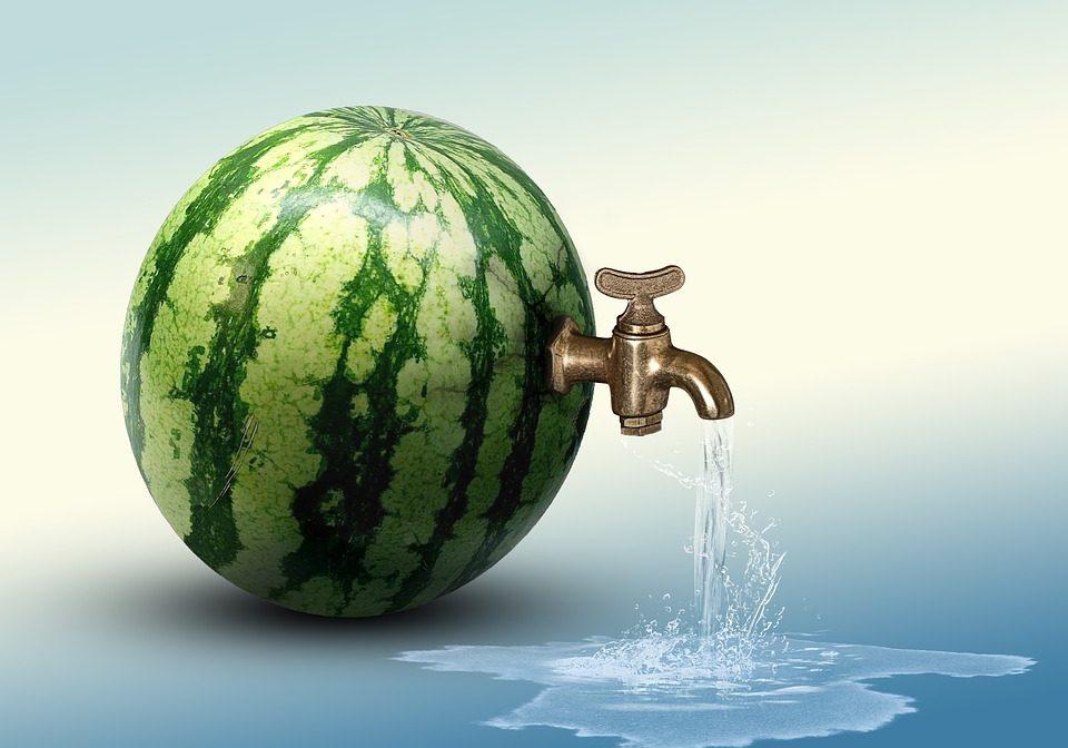 watermelon-3469415_960_720